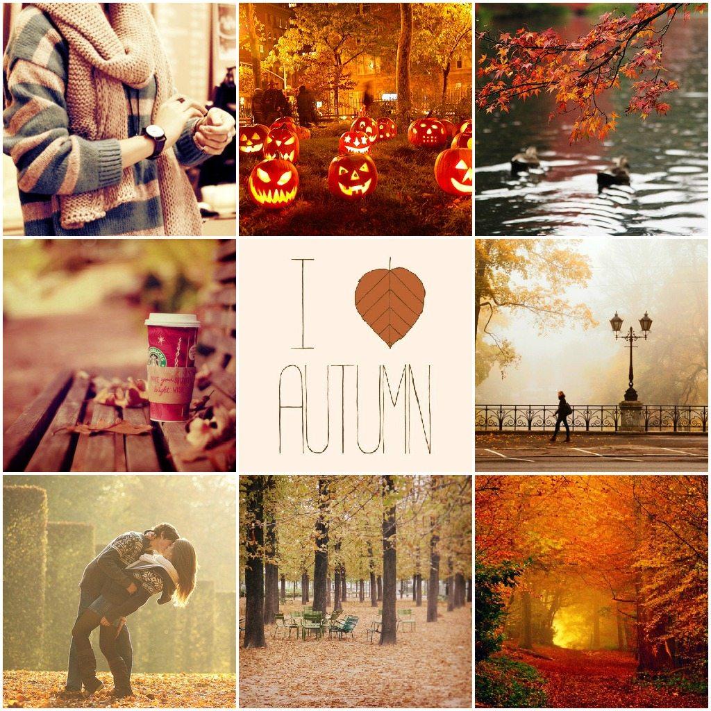 Hello Fall.  Sephira